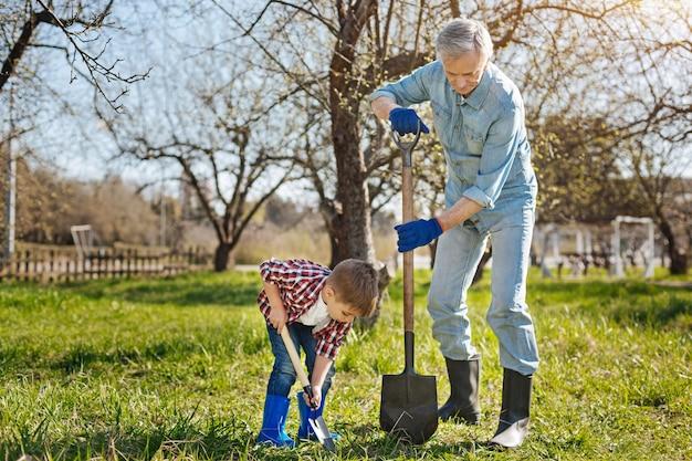 Deux générations masculines travaillant dans un jardin familial et ramassant le sol pour un nouvel arbre fruitier au printemps