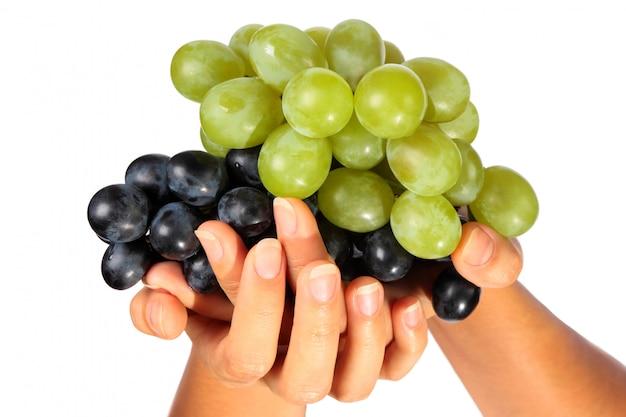 Deux grappes de raisins mûrs se situent dans des mains féminines isolées