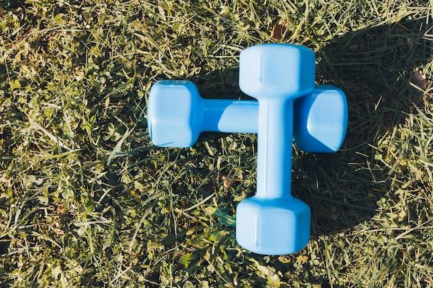 Deux haltères bleus sur l'herbe dans le concept de remise en forme de vie saine du parc