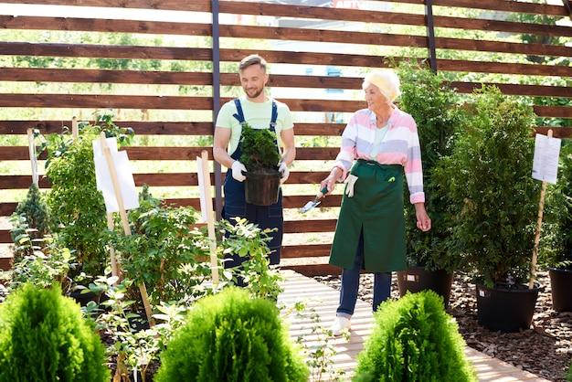 Deux jardiniers en serre