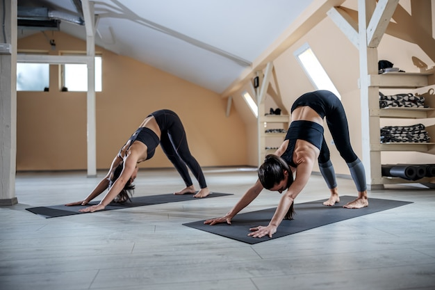 Deux jeunes femmes yogi flexibles en posture de yoga chien orienté vers le bas. intérieur du studio de yoga.