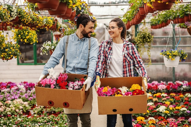 Deux jeunes travailleurs de jardin de pépinière heureux travaillant dur tenant des boîtes avec des fleurs, le déménageant et discutant.