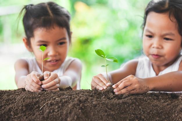 Deux jolies filles asiatiques plantant ensemble un jeune arbre sur un sol noir