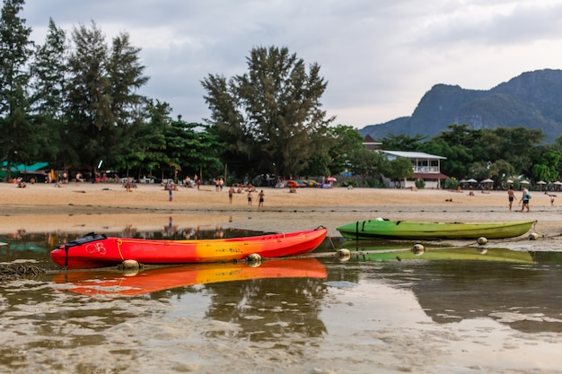 Deux kayaks colorés étaient assis sur le fond sableux de l'océan à marée basse.