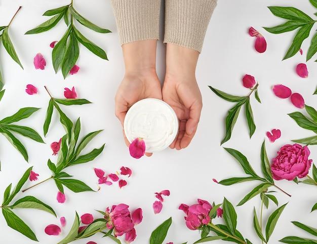 Deux mains féminines et un pot avec des pivoines à floraison crème et bourgogne