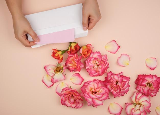 Deux mains féminines tiennent une enveloppe en papier blanc au milieu des boutons de rose en fleurs