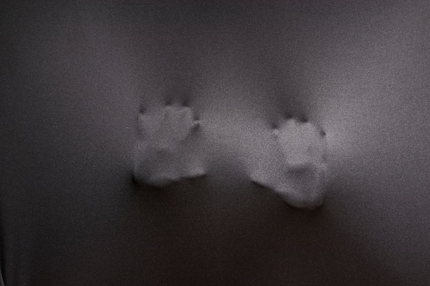 Deux mains, presser, chiffon