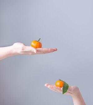 Deux mandarines sucrées entre les mains des enfants sur fond gris. vue de face