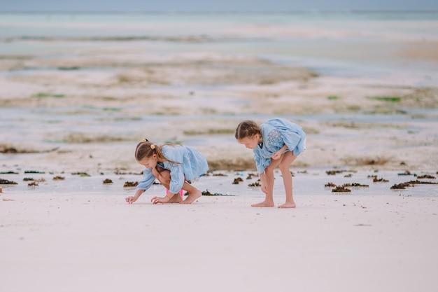 Deux petites filles heureuses s'amusent beaucoup sur une plage tropicale en jouant ensemble