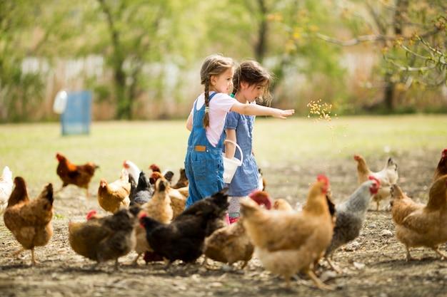 Deux petites filles nourrir les poulets