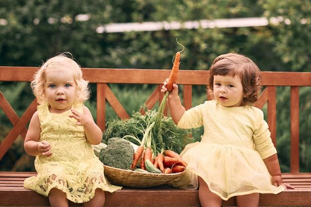 Deux petites filles en robe jaune, pieds nus, dans un jardin verdoyant sont assises sur un banc à côté d'un grand panier de légumes avec des concombres, des carottes et du brocoli. nourriture saine, nourriture végétarienne verte.