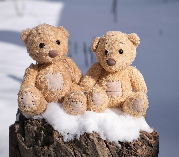 Deux petits ours en peluche sont assis sur une souche