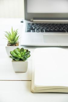 Deux petits pots avec des plantes grasses à l'ordinateur sur le bureau