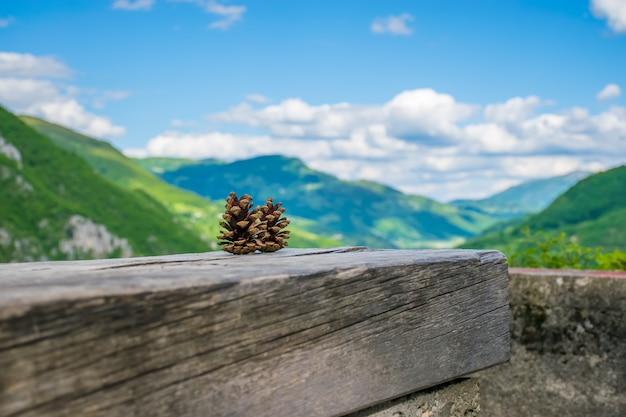 Deux pommes de pin reposent sur une bûche parmi les montagnes.
