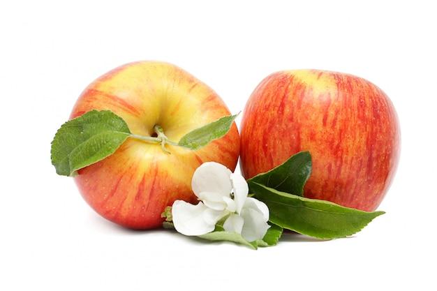 Deux pommes rouges avec des feuilles vertes et des fleurs