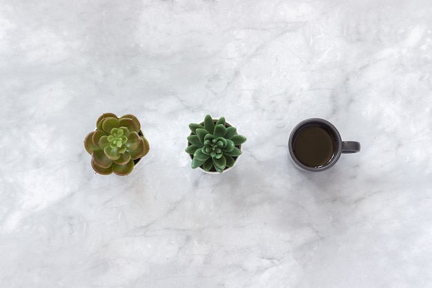 Deux pots de fleurs succulentes et une tasse de café noire se tiennent dans la rangée sur le fond de marbre