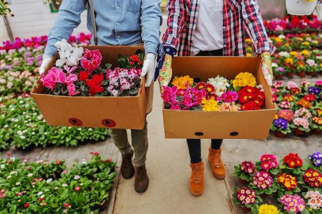 Deux propriétaires de petites entreprises marchant dans une serre et transportant des boîtes avec des fleurs colorées.