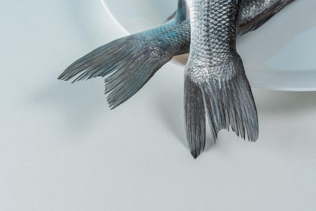 Deux queues de poisson bar frais sur une plaque blanche