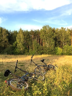 Deux vélos abandonnés dans l'herbe