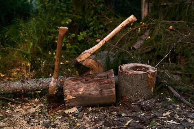Deux vieilles haches en bois coincées dans une souche d'arbre à l'extérieur