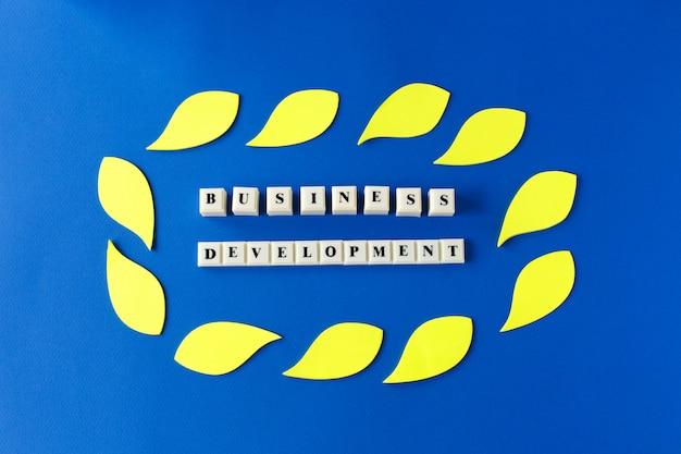Développement des affaires - texte sur des cubes en plastique sur bleu