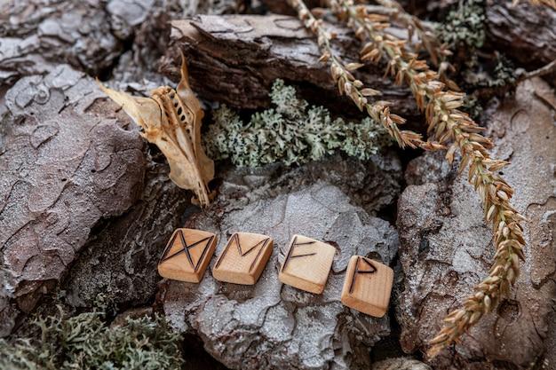 Devenir runique, symbole magique de bonne chance et de bonheur