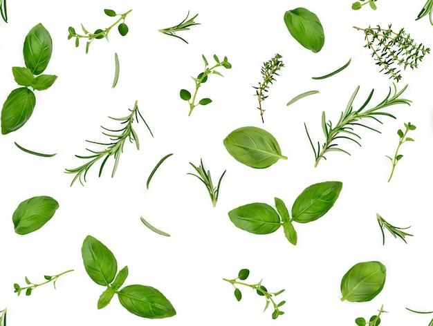 Différentes épices et herbes isolées sur fond blanc, feuille de basilic, thym, romarin