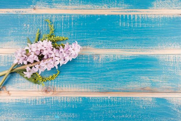 Différentes fleurs colorées fraîches