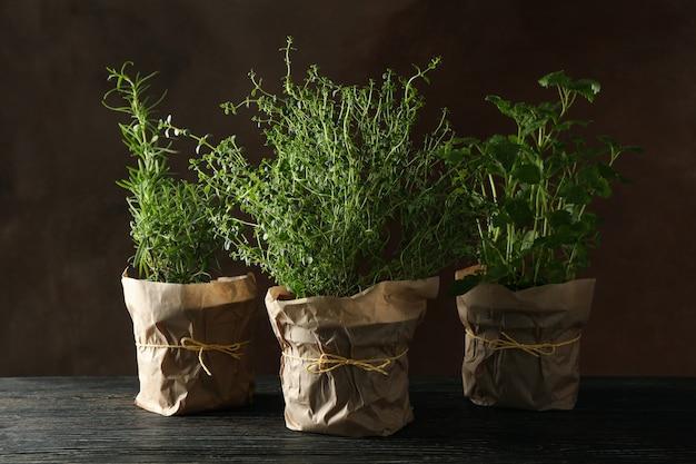 Différentes herbes sur table en bois sur fond marron