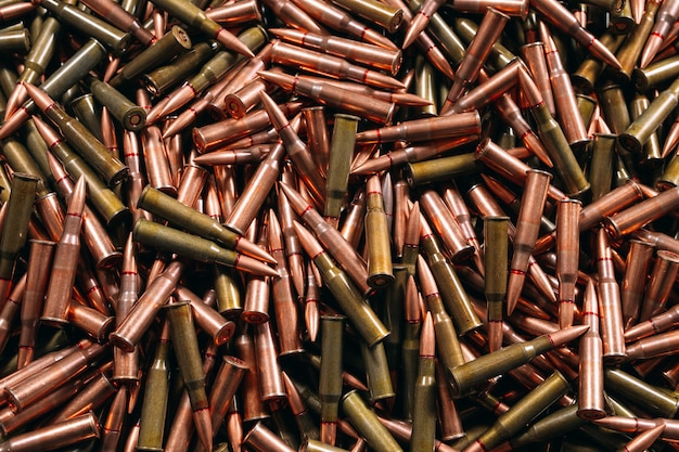 Différentes munitions sur bois