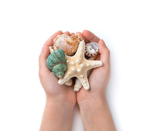 Différents coquillages entre les mains d'un enfant sur le fond du sable de la plage