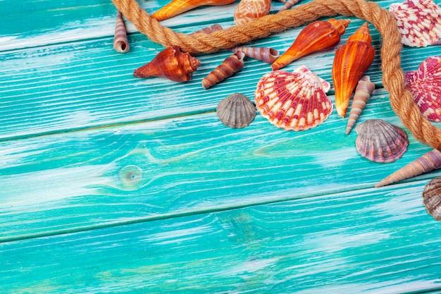 Différents coquillages sur fond en bois de couleur
