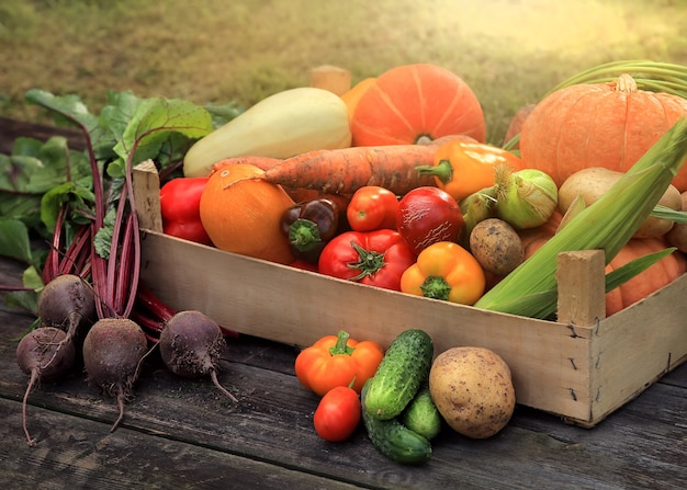 Différents légumes et fruits multicolores dans un panier debout sur la planche de bois