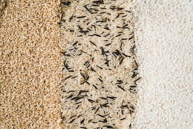 Différents types de riz dispersés sur la table