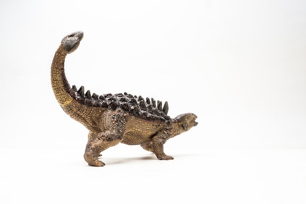 Dinosaure ankylosaurus sur fond blanc