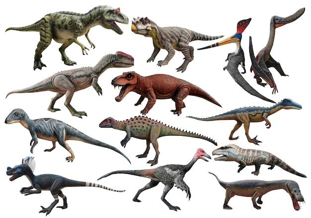 Dinosaure sur fond blanc jurassique