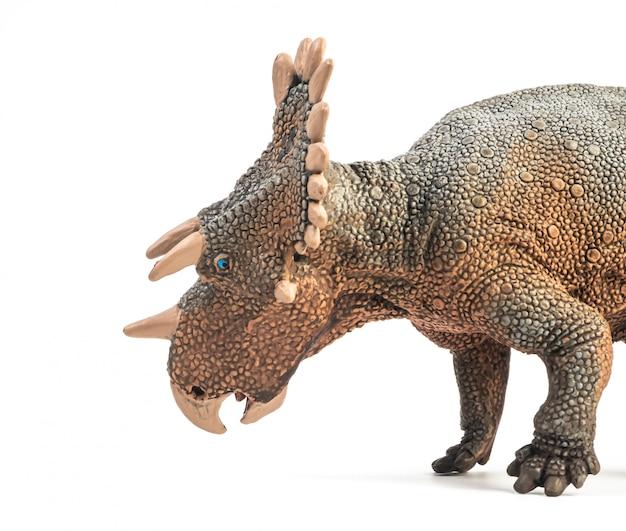 Dinosaure regaliceratops sur fond blanc