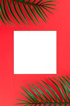 Disposition créative faite avec des feuilles de palmier tropical vert sur fond rouge