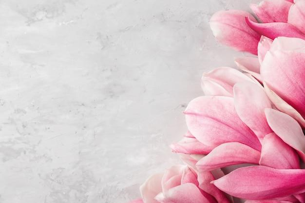 Disposition créative faite de fleurs de magnolia rose sur fond gris. mise à plat. concept minimal de printemps