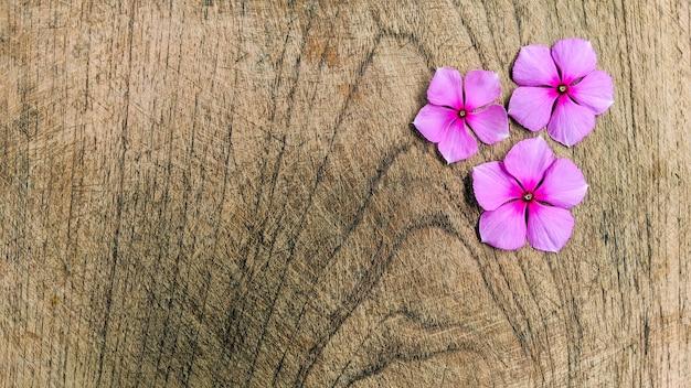 Disposition créative faite de fleurs violettes sur bois