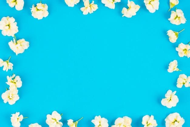 Disposition de fleurs de printemps sur les frontières