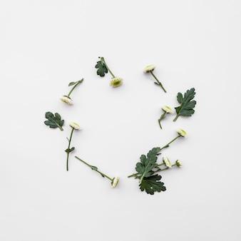 Disposition ronde de fleurs fraîches