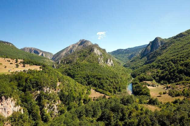 District de montagne - les montagnes couvertes de divers arbres, d'autres plantes.