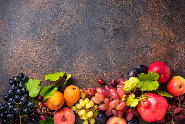 Divers fruits d'automne. récolte