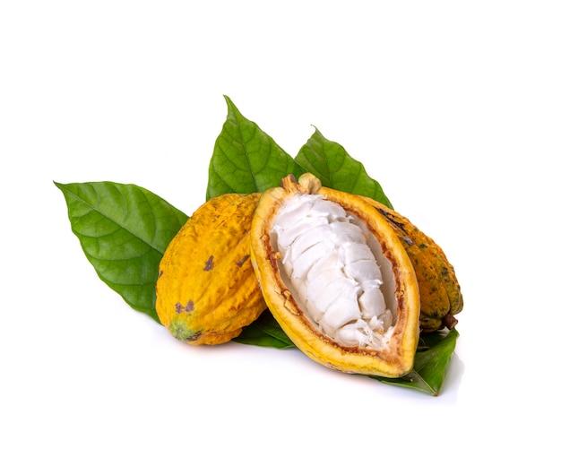 Divers fruits de cacao frais avec la moitié des feuilles en tranches et vert isolé sur fond blanc