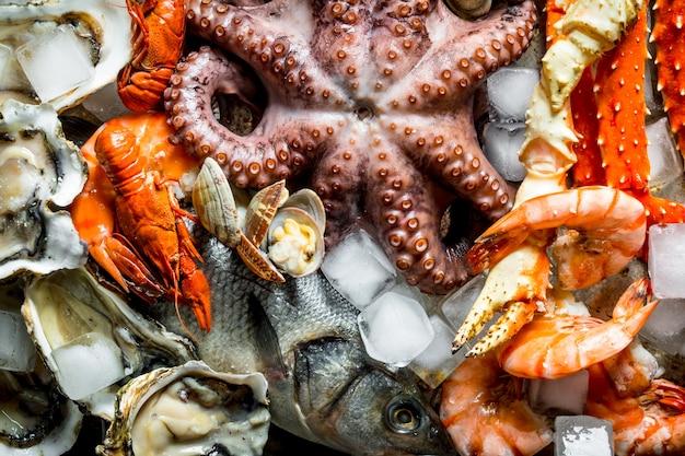 Divers fruits de mer avec des glaçons.