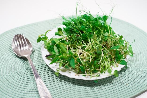 Divers microgreens dans une assiette. alimentation équilibrée.