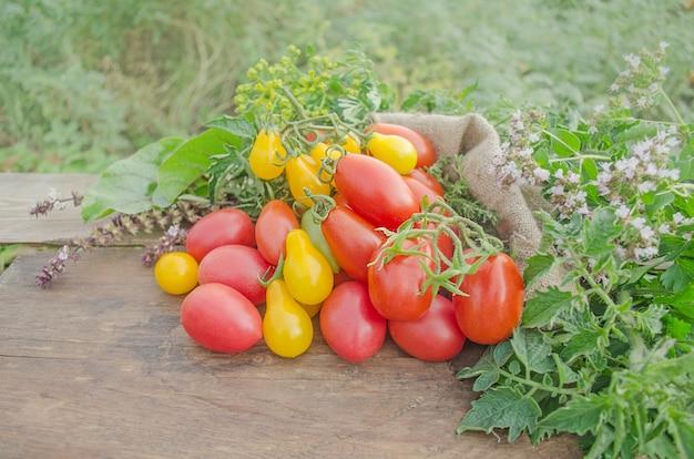 Divers de tomates tranchées colorées