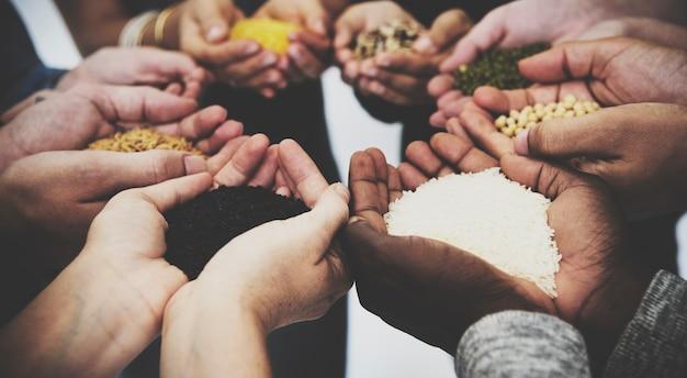Diverses personnes tiennent leurs mains pour montrer le corps de superfood grains
