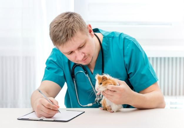 Docteur en médecine vétérinaire